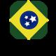 logo_brasileirissimo